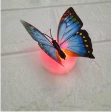 Đèn led bướm 3D